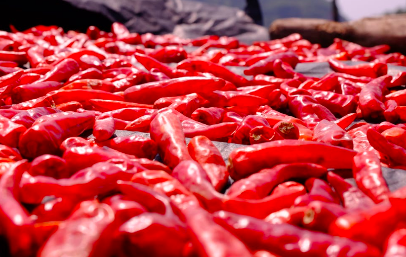red peppers, chili peppers, hot chili peppers, red peppers, peppers