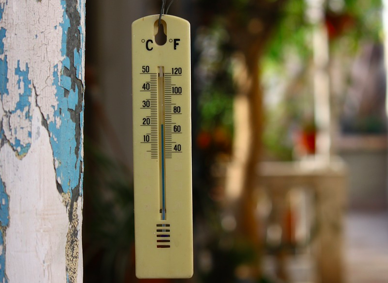 thermometer, temperature for growing peppers, growing peppers, peppers, temperature thermometer