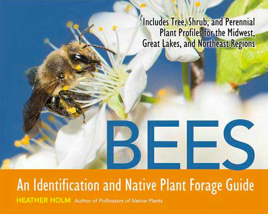 Bees, best gardening books, books about bees, bee books