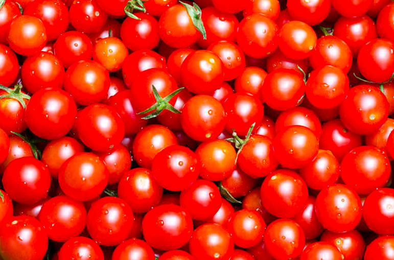 best cherry tomato, best cherry tomatoes, best cherry tomato varieties, bing cherry tomatoes, cherry tomatoes