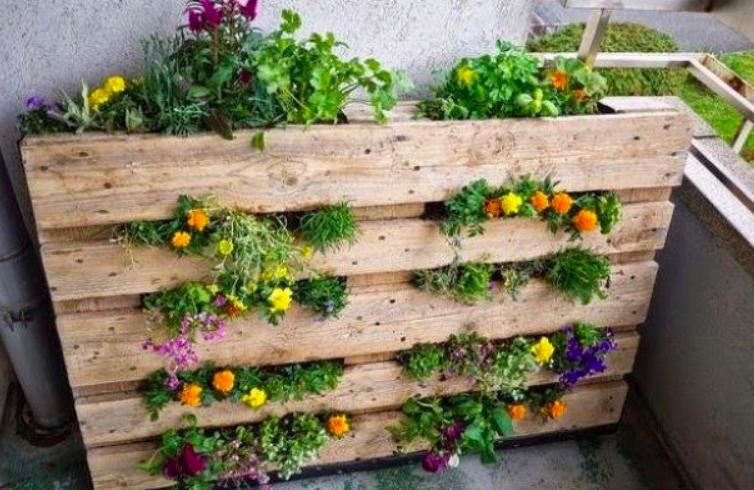 upcycling ideas, pallet garden, vertical pallet garden, pallet planter, upcycled pallet