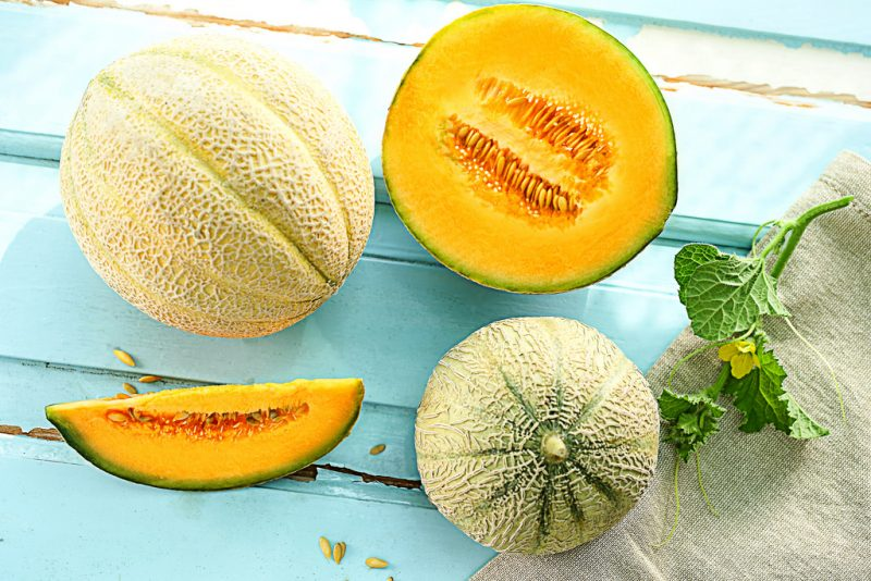 small melons, small melon variety, tiny melons, small watermelons, small cantaloupe, mini watermelons, mini melons, growing miniature melons