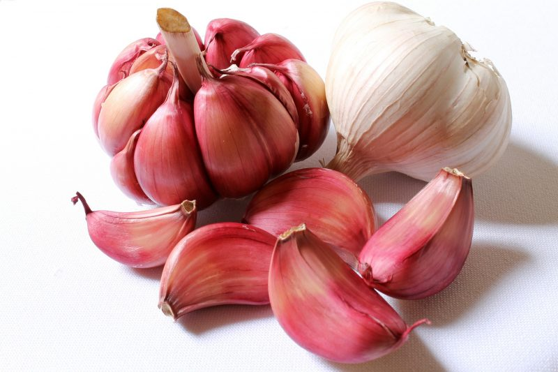 garlic varieties, garlic, garlic types, growing garlic, creole garlic
