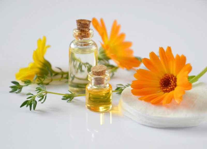 Calendula marigold medicine