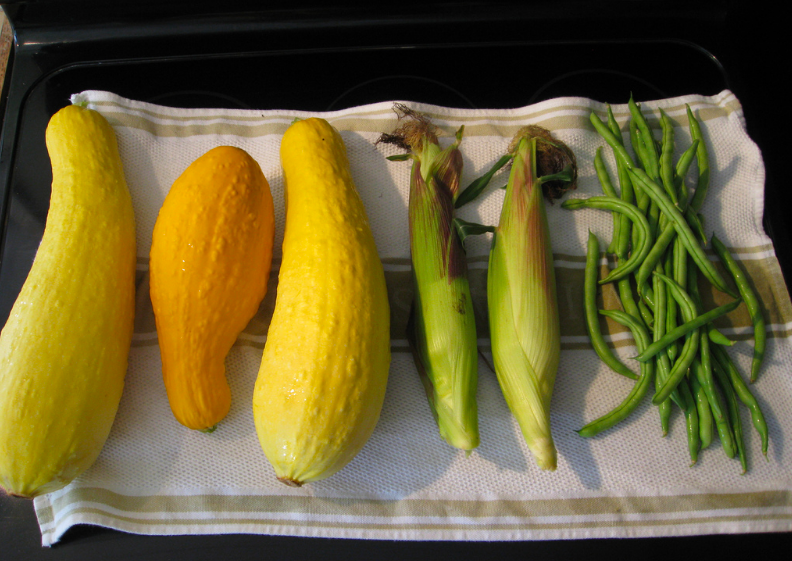 summer squash, corn, and beans