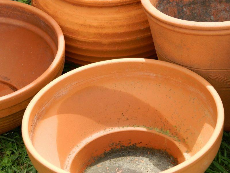 garden pot planter