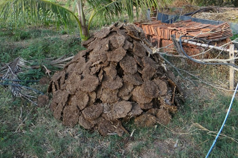 Plant nutrients in manure