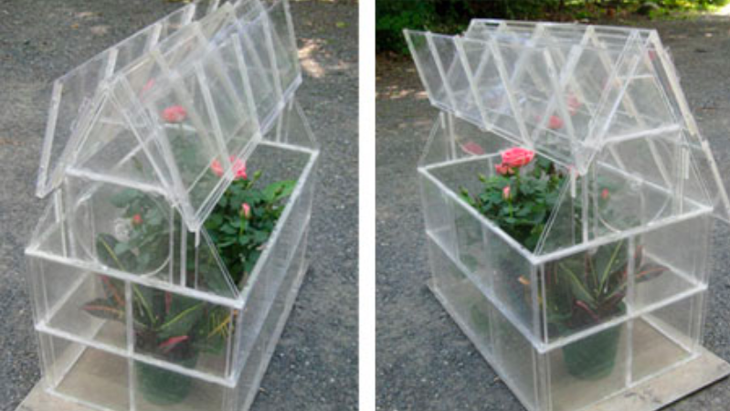 CD case mini greenhouse
