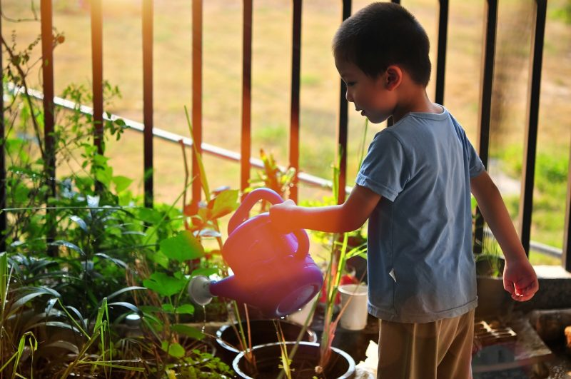 vegetable gardening for kids