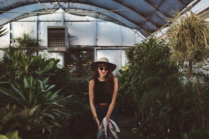 Indoor palm greenhouse
