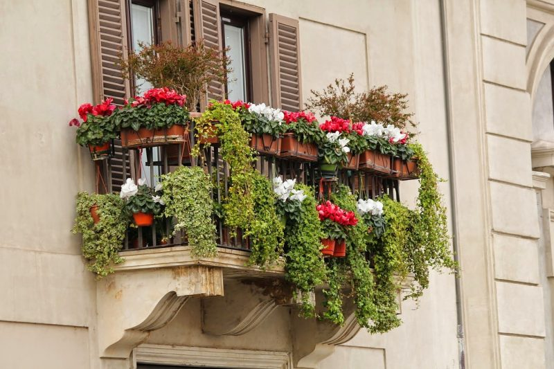 balcony privacy flower garden