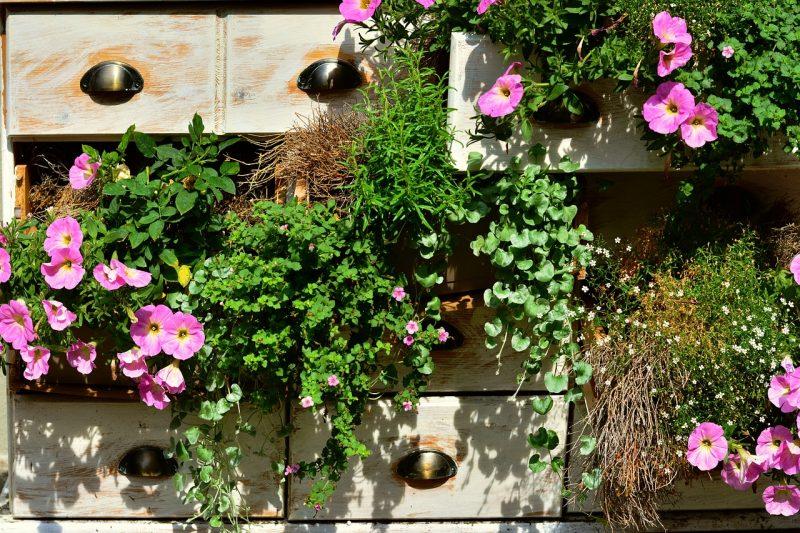 vertican vegetable garden
