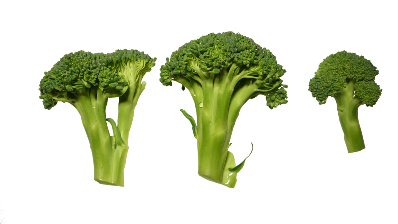 broccoli stalks