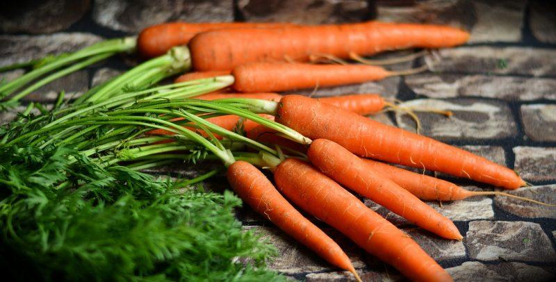 Salad garden carrots
