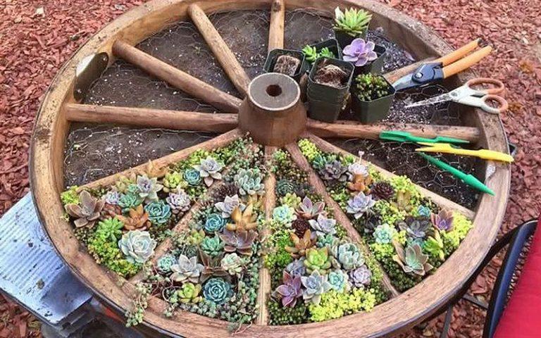 Wagon wheel trellis ideas