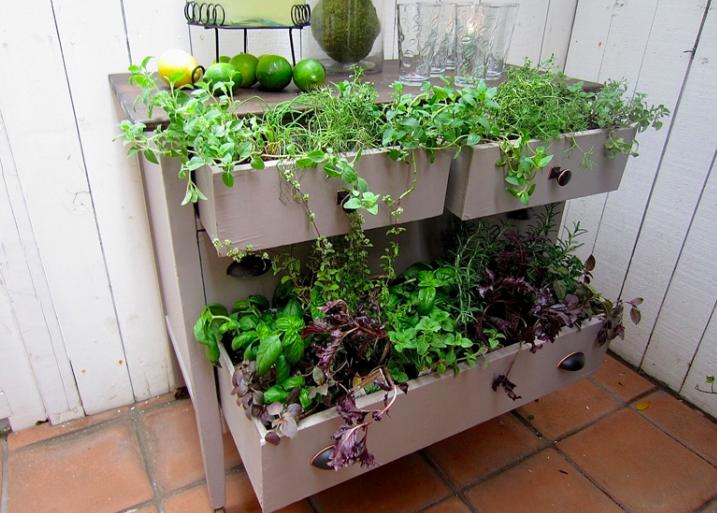 Dresser Garden Layout