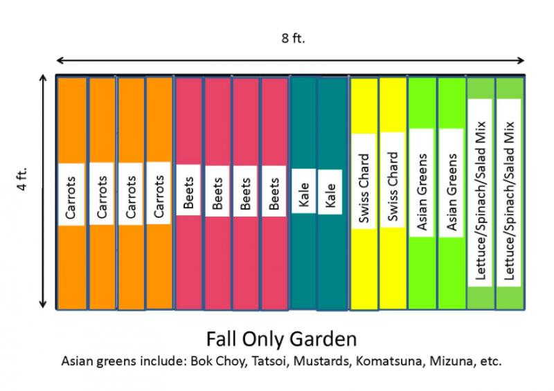 Fall vegetable garden layout