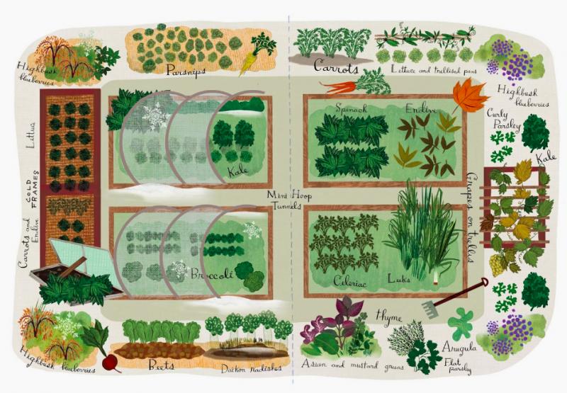 Year-round vegetable garden layout