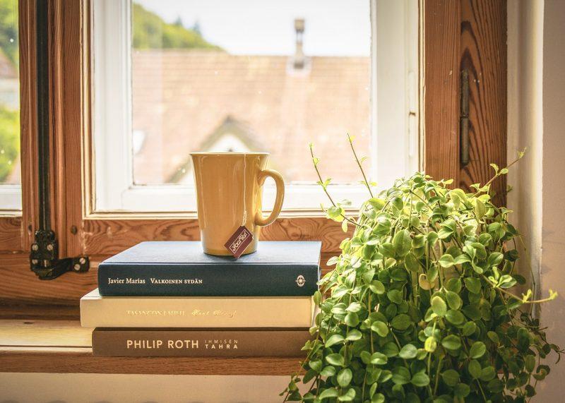 houseplant benefits
