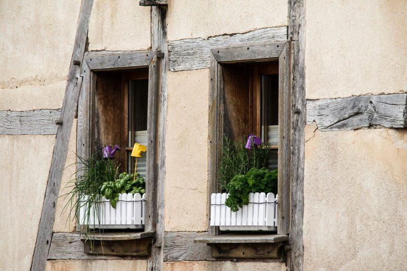 Window box garden layout