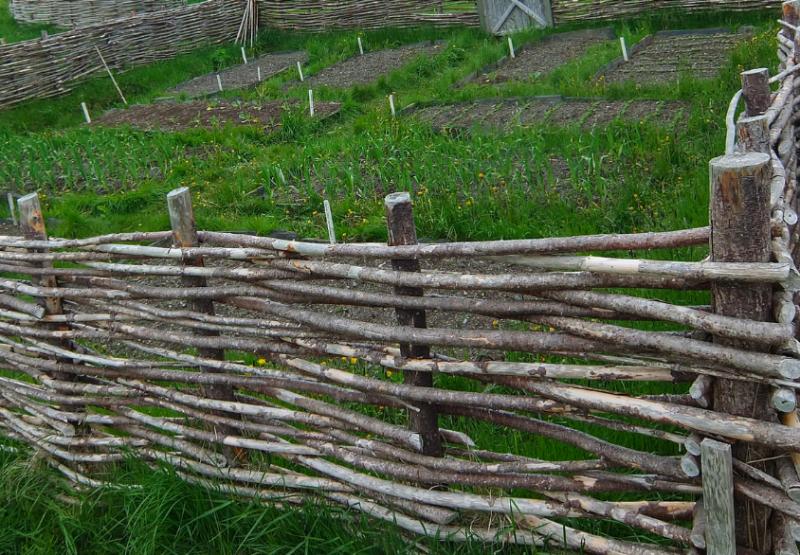 Woven wattle fence for a garden