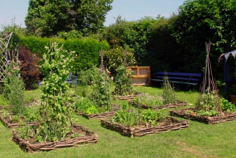 English Wattle Garden