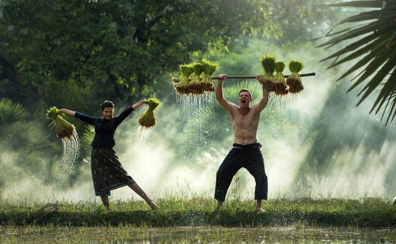 Happy farmers no-till gardening
