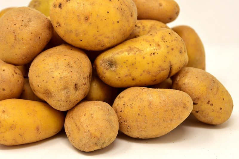 Inca gold potatoes