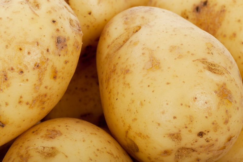Carola yellow potatoes