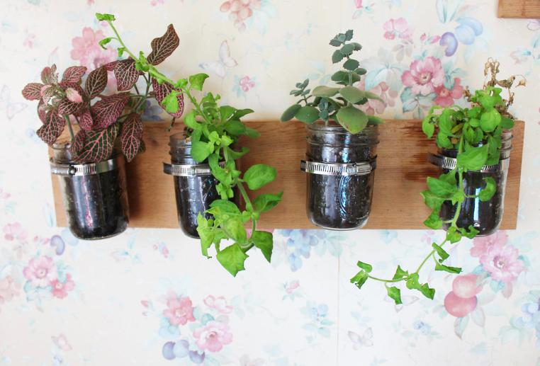 Hanging herb garden jars