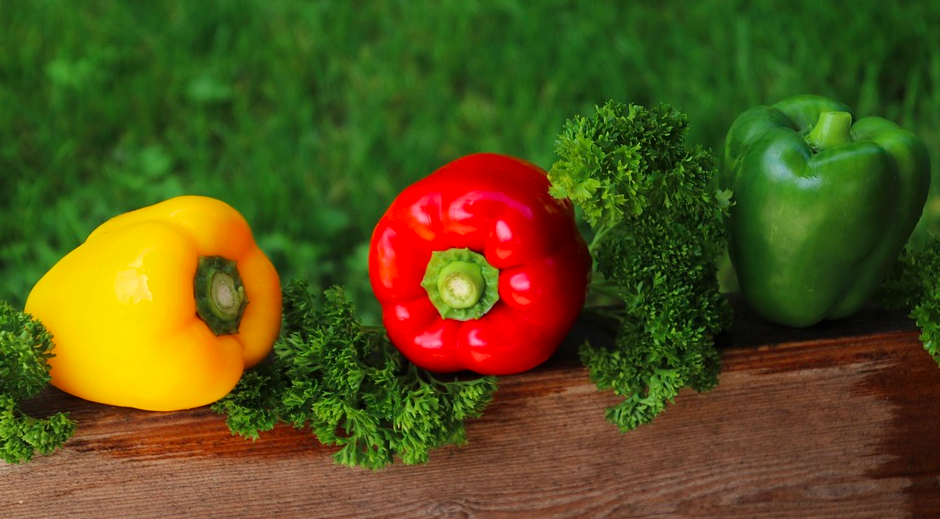 How to Grow Peppers in Your Home Garden