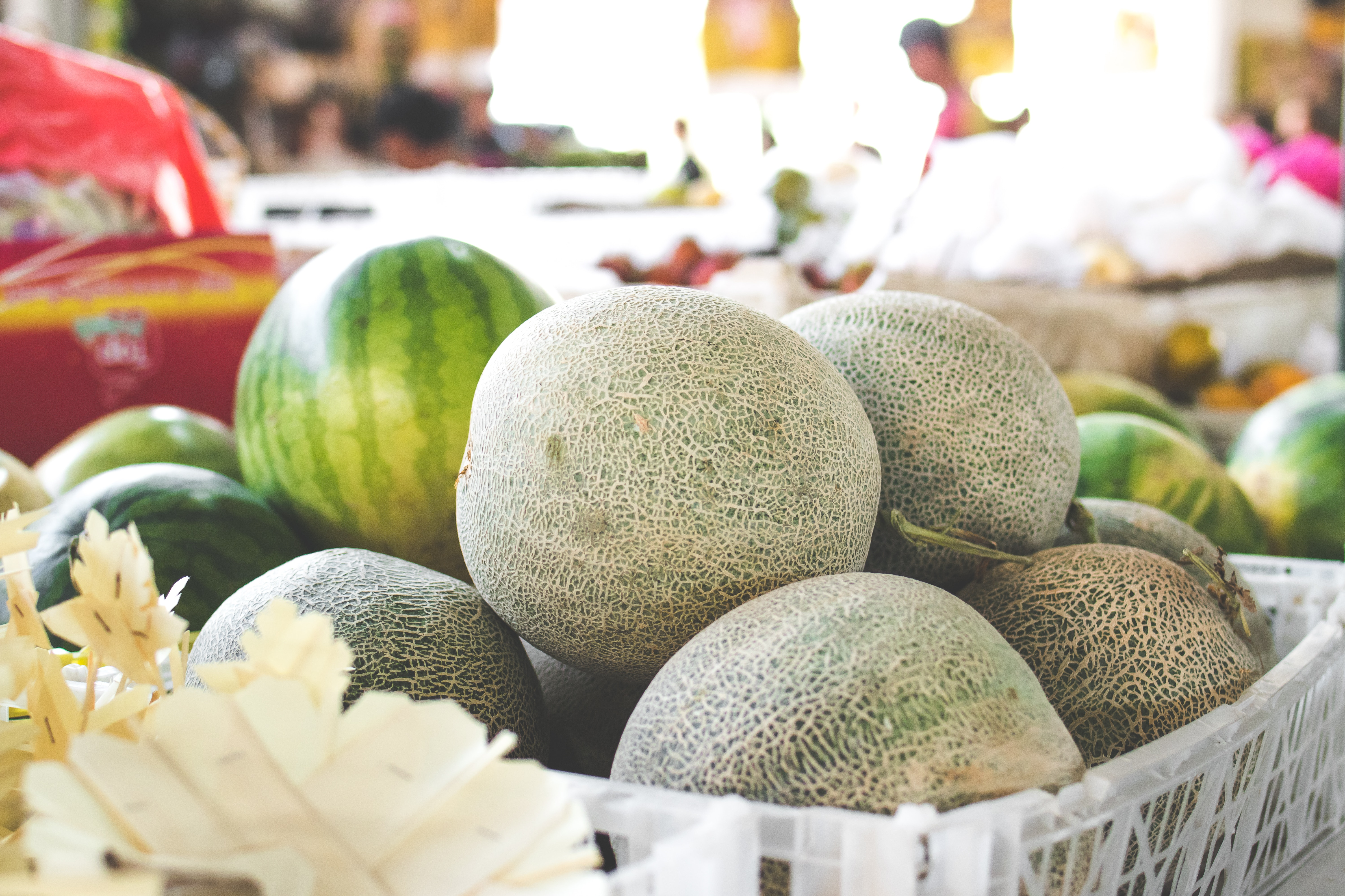 8 Small Melons Packed with Gigantic Flavor