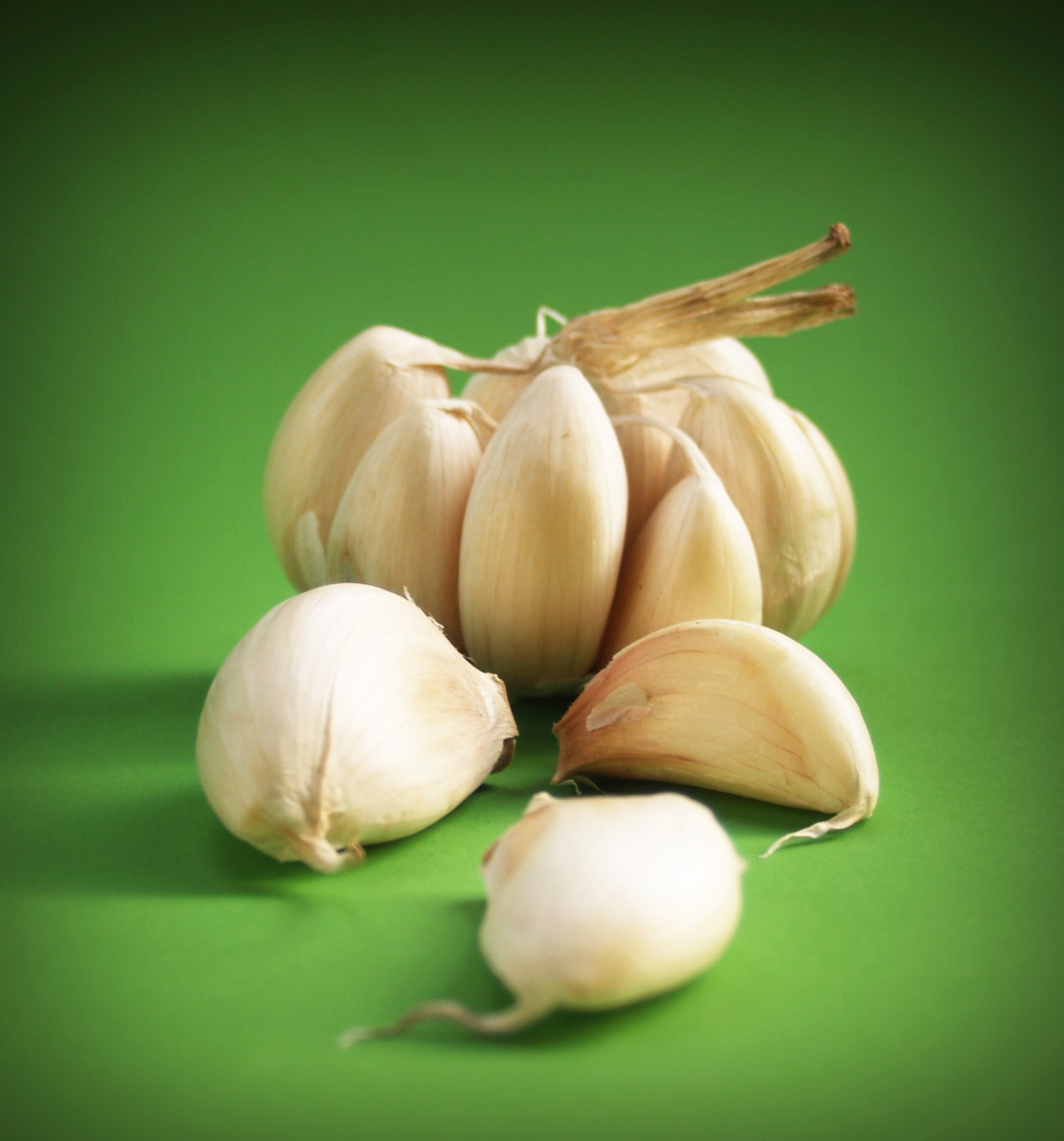 8 Essential Garlic Varieties for You to Plant This Fall