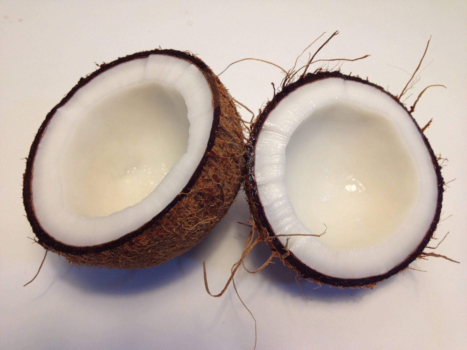 Coconut Coir: An Effective and Inexpensive Growing Medium