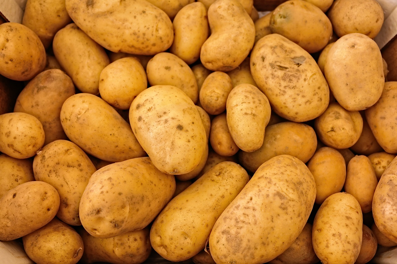 A Detailed Guide to Growing Potatoes Perfectly