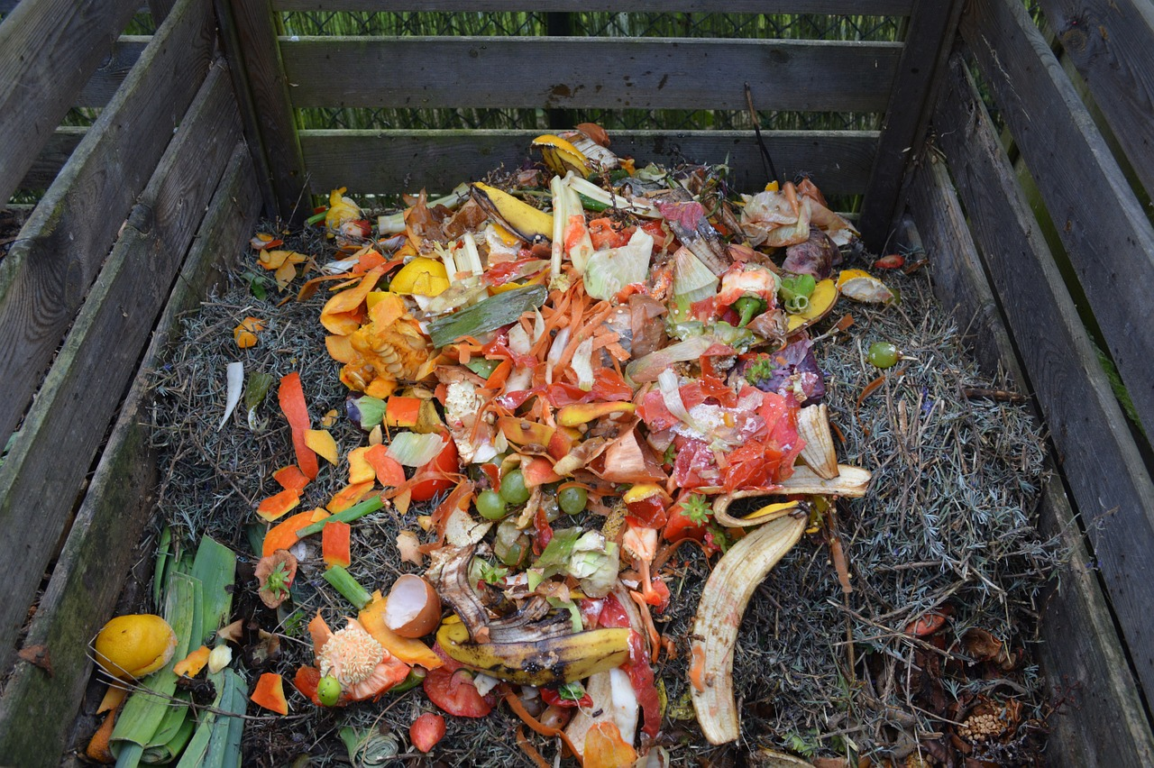 What You Should NOT Put in Your Compost Heap