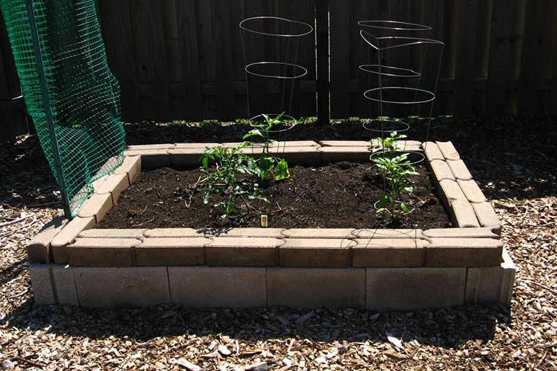 The Quick and Easy Way to Build a Cinder Block Raised Bed