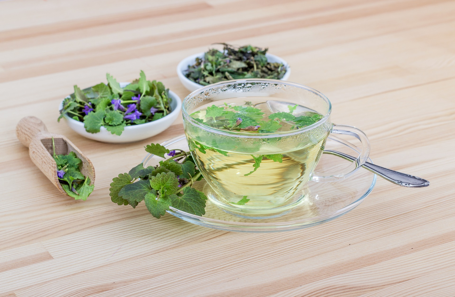 15 Tea Herbs to Grow At Home for Powerful Health Benefits