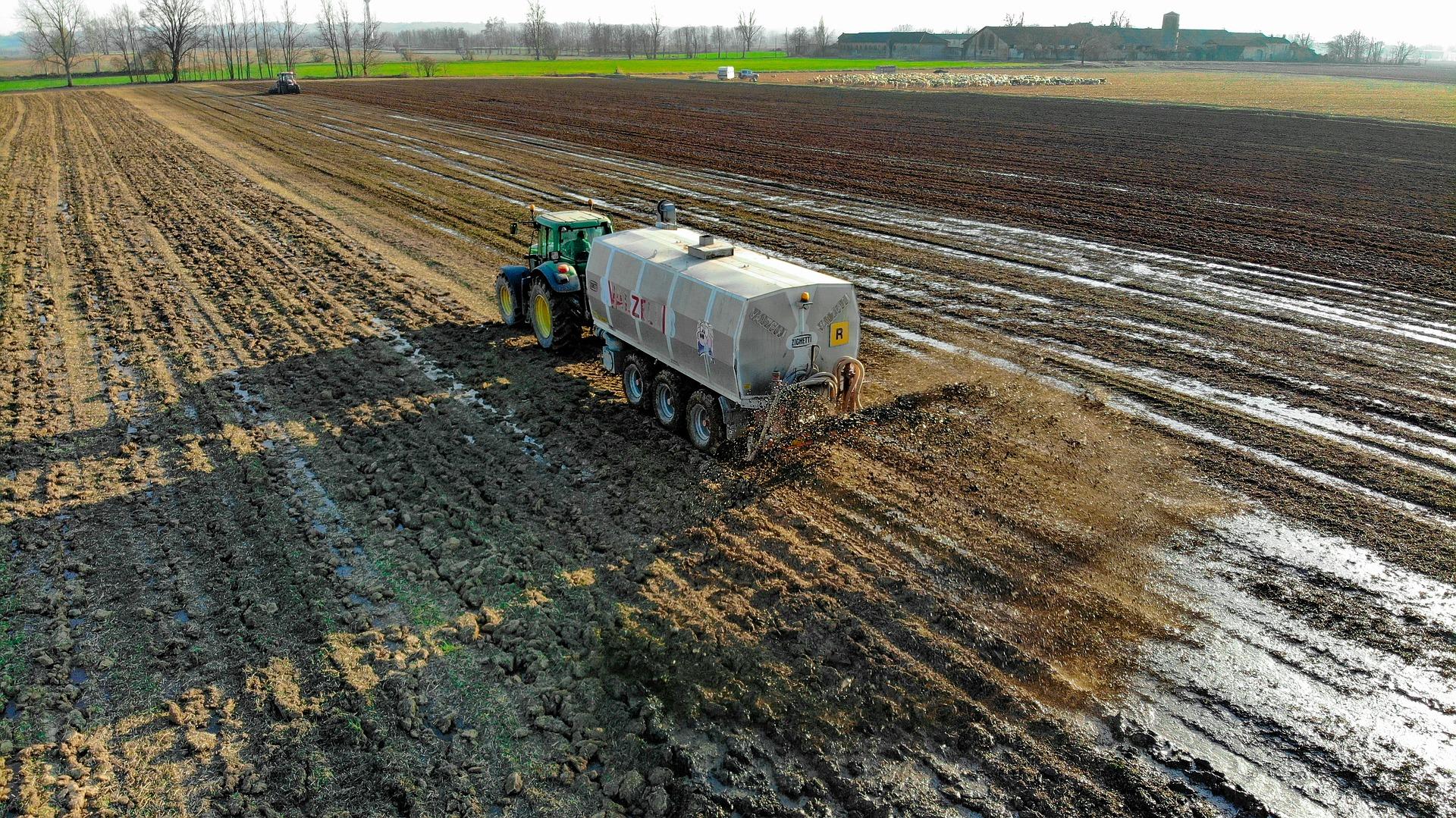 12 Best Ways to Add Nitrogen to Soil