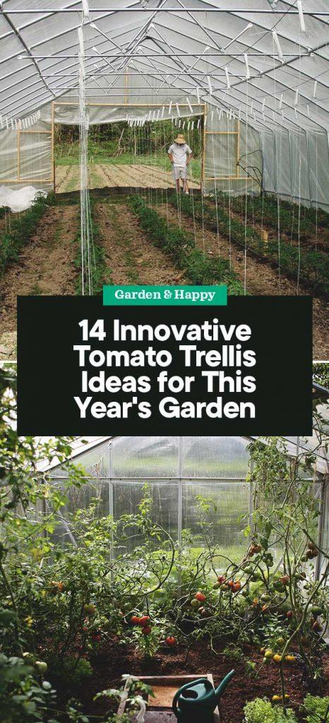 14 Innovative Diy Tomato Trellis Ideas For Your Garden Garden