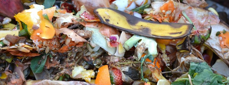 What you can put in a compost tumbler