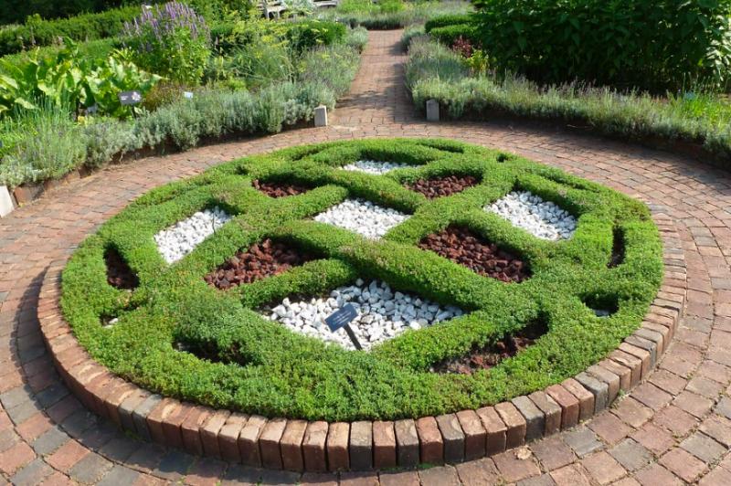 Knotwork garden