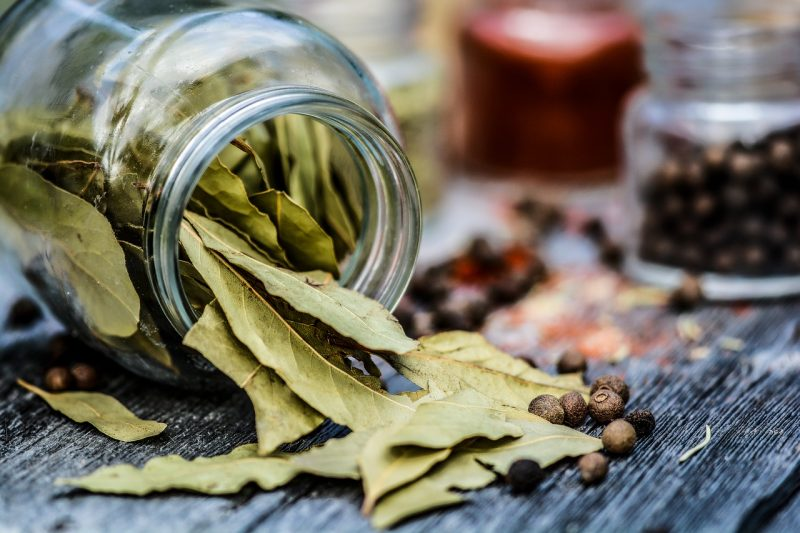 Bay leaves for flavoring French vegetables