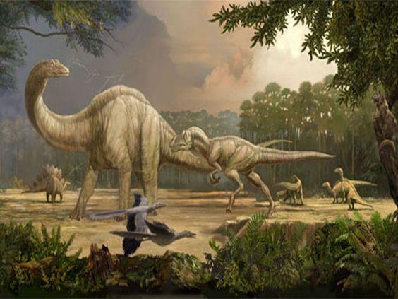 dinosaur age ferns
