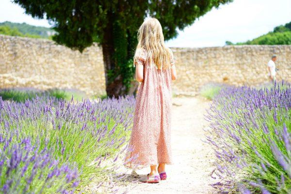 Garden of magical plants