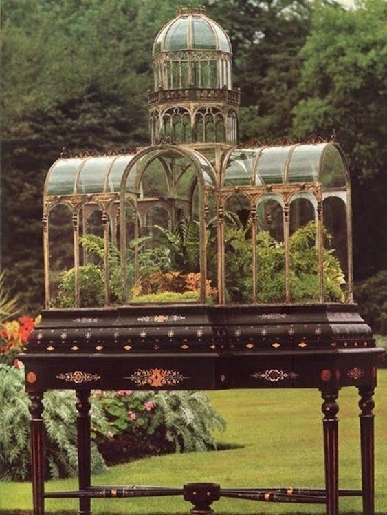 Victorian Fern case