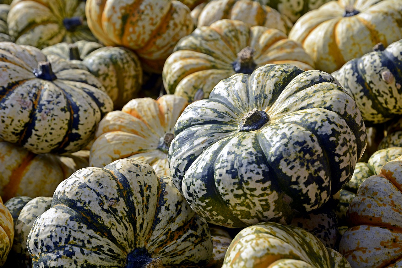 15 Amazing Ways to Use Decorative Gourds This Fall