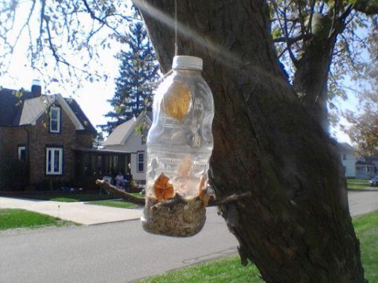 Squirrel feeder diy
